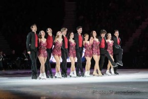 2015 Stars on Ice Tour Preview by The He Said She Said Experience